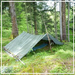 Erlebnisfeld Waldbaden